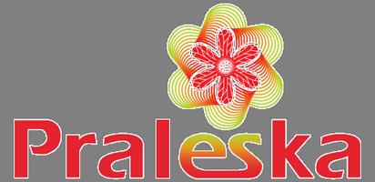 Интернет магазин оптовой детской одежды Praleska